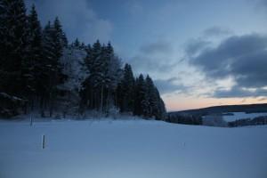 machen wir dem Winter die Lichter aus und warten auf bessere Zeiten, und vor allem wärmere